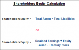 How to calculate shareholder's funds